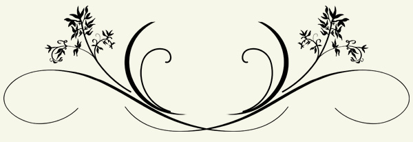 decorative shapes png
