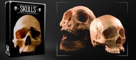 skulls-3003