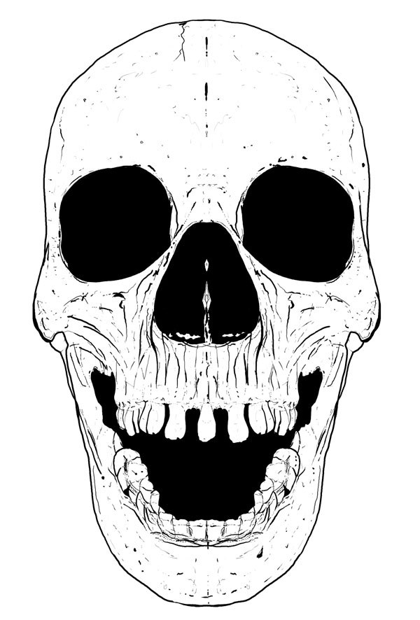 Hand Drawn Skull 1
