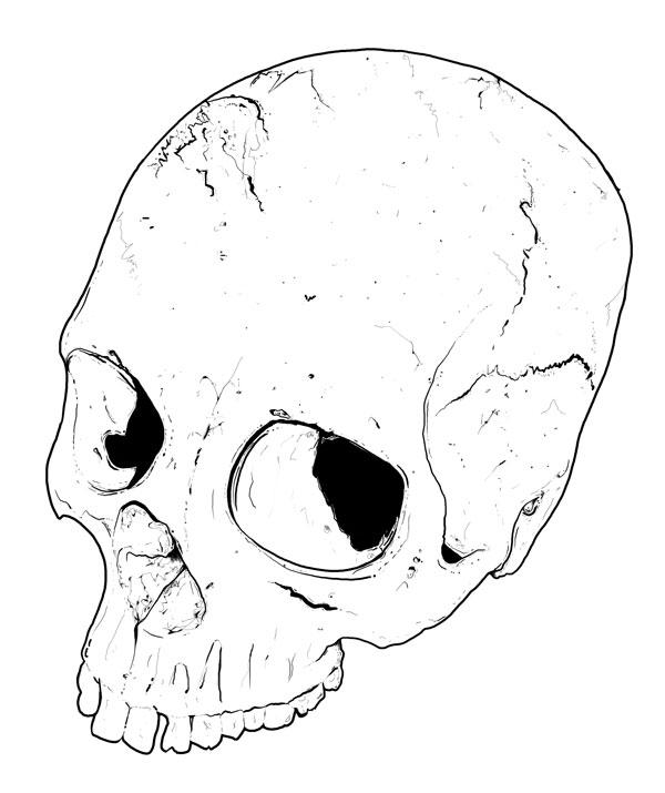Hand Drawn Skull 3