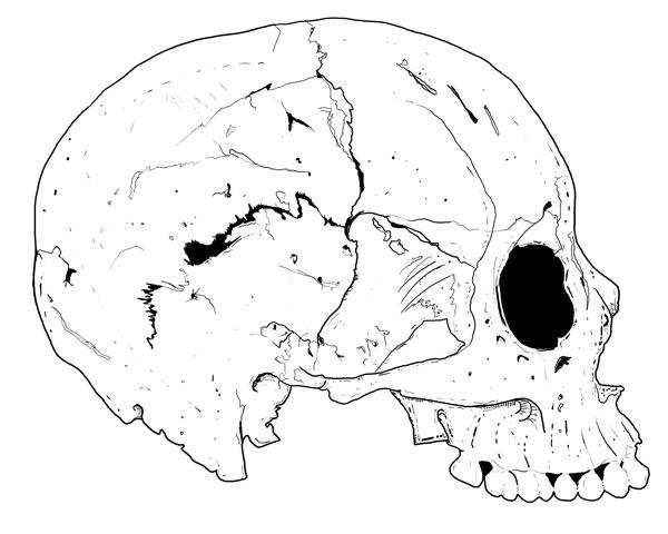 Hand Drawn Skull 5