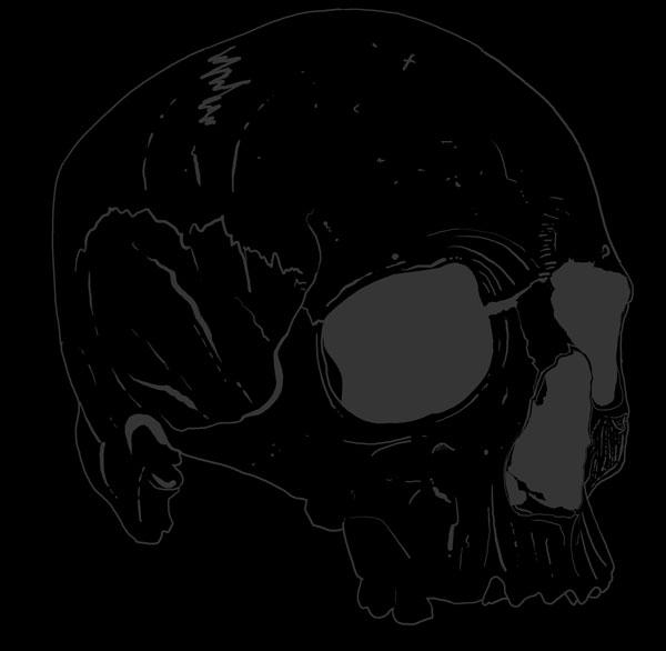 Hand Drawn Skull 6