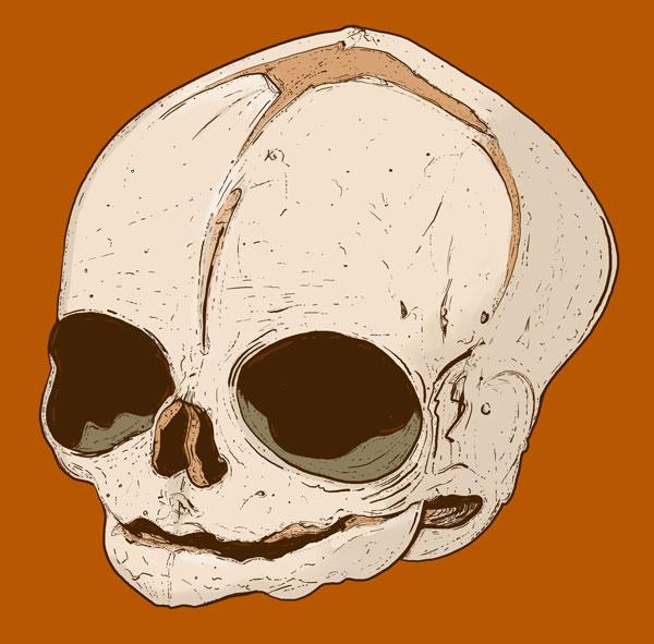 Hand Drawn Skull 7