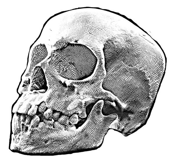 Hand Drawn Skull 8